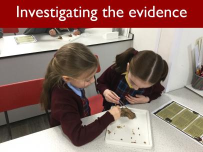 10 Investigating the evidence