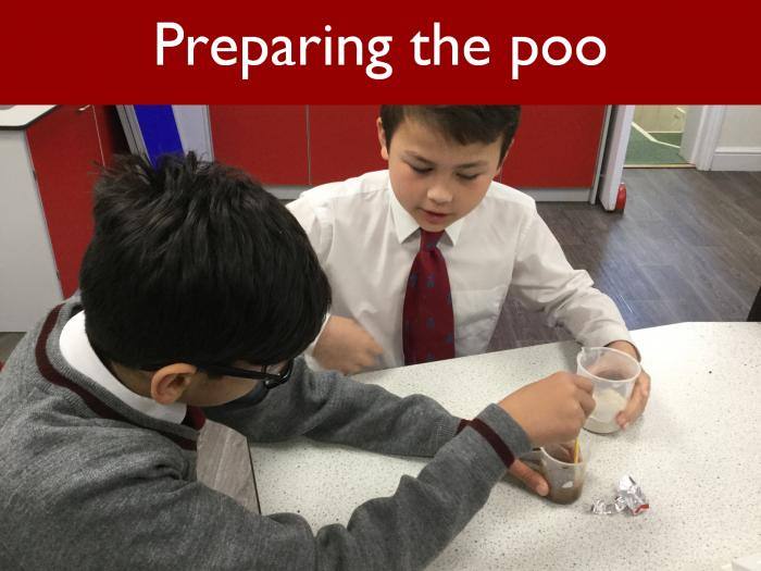 2 Preparing the poo