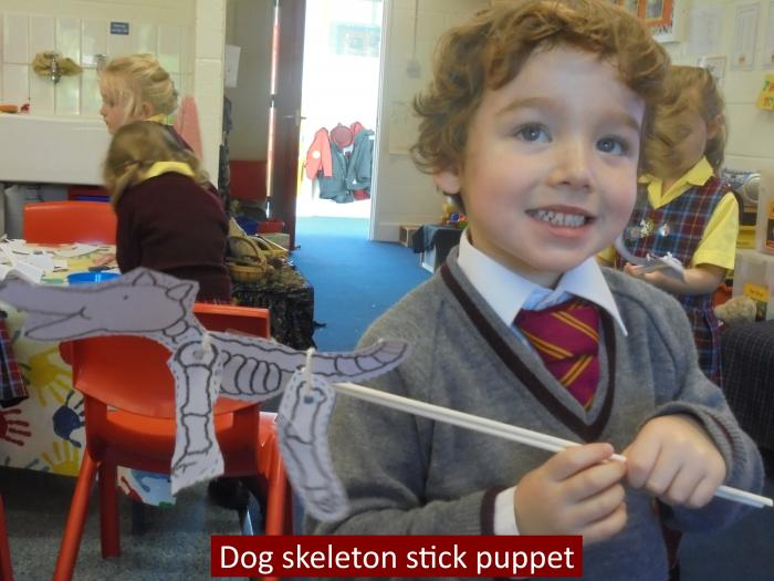 08 Dog skeleton stick puppet resized